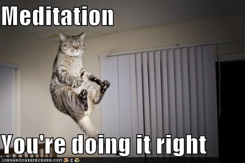 funny-pictures-meditation-youre-doing-it